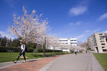 A person walking on a campus sidewalk, with blue skies and green grass.