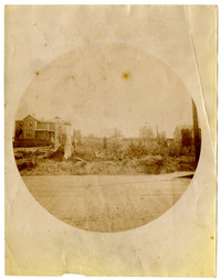Circular photograph of scene from wood-plank street of six houses and cleared land with stumps and underbrush