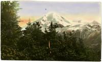 Mt. Baker seen through trees