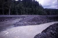 Confluence of Green River (left) and North Fork Toutle River, showing mudflow.