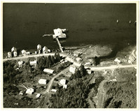 Aerial view of unidentified coastal hamlet with pier