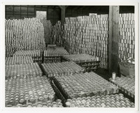 Room full of stacks and pallets of cans of salmon