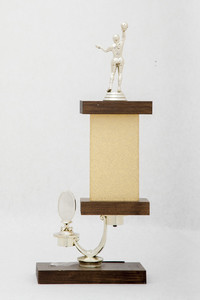 Basketball (Women's) Trophy: SOSC Northern-Southern Area Champs (back), 1976