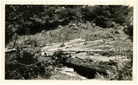 Old Fraser River Gold Trail-1858