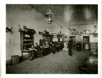 Six men and a young a youngboy in a large room with several desks and multiple taxidermied animals on display