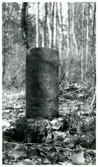 Grave marker of Ole Larson in overgrown cemetery