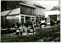 Five little boys stand next to and atop a small donkey in the middle of dirt-paved main street of Wardner, ID, a small mining town; a group of men stand outside the Cove & Crane General Merchandise store in background