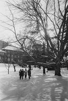 1968 Students in Snow