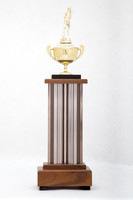 Cross-Country Running (Men's) Trophy: Evergreen conference 1st place (back), 1973