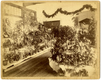Room full of exhibited potted plants and floral arrangements