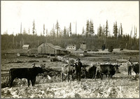 View of farm with house, barns, corrals, and three men and cows in foreground