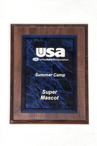 General Plaque: United Spirit Association Summer camp super mascot, undated