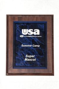 General Plaque: United Spirit Association Summer camp super mascot, undated