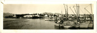 View of Petersburg, AK, harbor and public docks