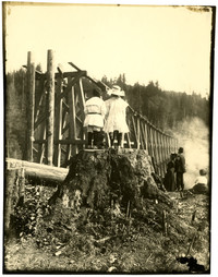 Young boy and girl stand atop a large fir stump to watch construction of railway trestle over Chuckanut Creek for Puget Sound Traction Company's interurban line