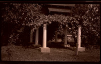 Grape arbor supported by six columns with a small dog standing under it and a large, unidentified building, possibly a church, behind it