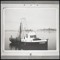 "Fishing boat ""Calendar"", sitting in still water (probably Bellingham Bay), with nets hung from the mast"