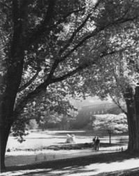 1980 Lawn in front of Old Main