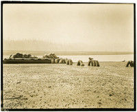 bags of oysters rest on mud flats and dock