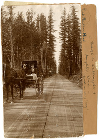 George C. Dellinger & daughter Edna in horse-drawn buggy on Guide Meridian Road through forest