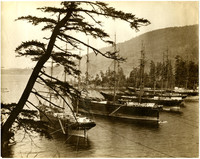 Pacific Packing Cannery ships along Chuckanut Bay