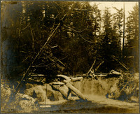 The upper falls of Whatcom Creek
