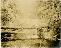 Log bridge over Whatcom Creek