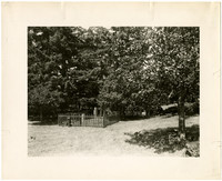 Small fenced cemetery surrounded by trees
