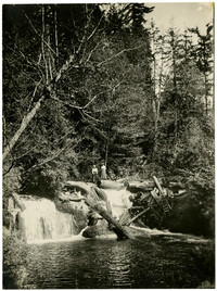 Two women are standing on top of a pile of logs at the top of one of Whatcom Creek's small falls.