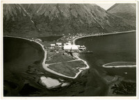 Aerial view of Pacific American Fisheries' cannery at King Cove, Alaska showing a peninsula extending out into the water with a short landing strip in the foreground, cannery buildings in the middle ground, and a lake, houses and mountains in the backgrou