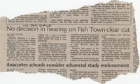 No decision in hearing on Fish Town clear cut