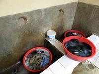 Washing the fundamentals - Rwanda