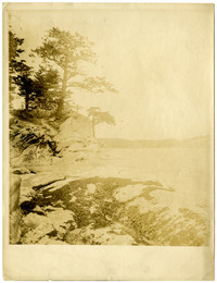 Trees and rocks along shoreline of Puget Sound waters below Chuckanut Mountain