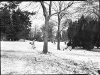 1946 Campus School Junior High Students Throwing Snowballs