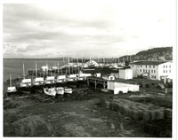Pacific American Fisheries shipyard at Commercial Point in Fairhaven (Bellingham, Washington) with seven fishing boats in dry dock in the middle ground and several others at the docks beyond