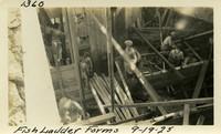 Lower Baker River dam construction 1925-09-19 Fish Ladder Forms