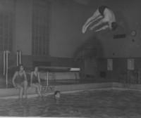 1947 Pool