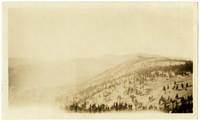 Vista of sparsely-wooded hills