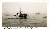 Purse Seining for salmon, Puget Sound - vessel with net cast in water