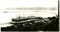 View from hillside above of Sehome wharf with two steamer vessels docked, and railroad tracks at base of hill
