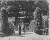 1980 Old Main: Main Entrance Looking Toward Bird Sanctuary