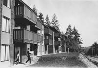 1971 Birnam Wood