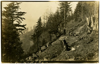 Several men trail-building on forested slope - likely Chuckanut mountian, with railroad trestle in left background