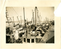 Fishing boats docked three abreast at Anacortes Port
