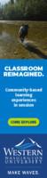 Degree Programs - Carnegie - Locations Undergrad Everett (Sets 5 & 6) Ads - February 2021