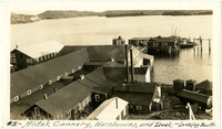 View from hillside above of Alitak cannery warehouses and dock