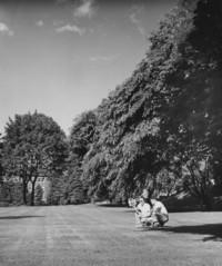 1955 Edens Hall