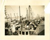 Fishing boats docked three abreast at Anacortes Port