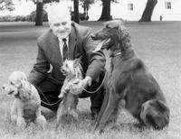 Nixon's Dogs