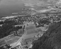1955 Aerial View